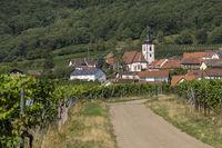 Blick auf das Weindorf Weyher in der Pfalz