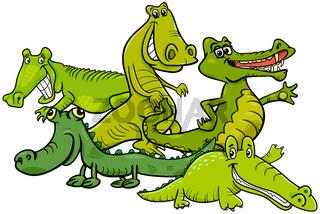 Funny crocodiles cartoon animal characters