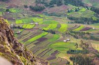 agriculture terraced fields in Ethiopia