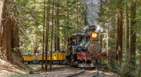 Felton, California - August 31, 2019:  Roaring Camp' Dixiana Shay Steam Train Crossing Redwoods in S