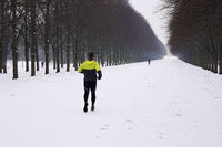 people jogging and walking in snow