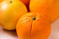 Group of Organic Oranges, Grapefruit and lemon