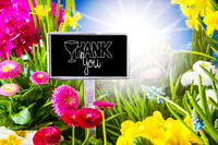 Sunny Spring Flower Meadow, Calligraphy Thank You