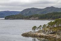Blikkengfjorden in Trondelag