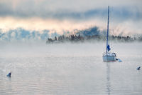 Foggy misty lake landscape in Colorado, USA