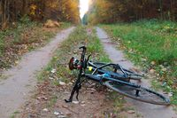 the bike in the autumn forest