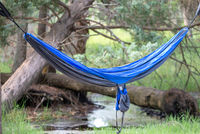 hammock in the woods at campsite