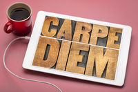 Carpe Diem word abstract in wood type