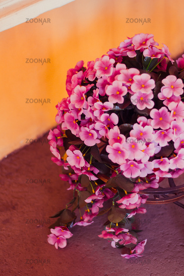 Pink artificial potted flowers. Decorations of the city. Flowers in the street