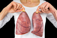 Person holds two lung models in front of white chest
