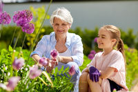grandmother and girl with flowers at summer garden