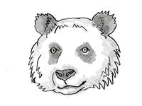 giant panda Endangered Wildlife Cartoon Retro Drawing
