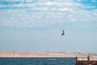 professional kiter glide the water surface of the ocean at great speed. Back view behind extreme wide shot