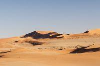 Dunes in the Namib Desert to the horizon, Namibia, Africa.