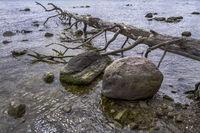 On the banks of the Ruegischen Bodden
