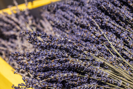 Yellow wooden box with dried lavender