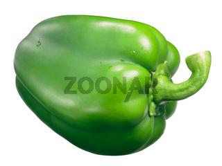 Yolo wonder sweet bell pepper, green