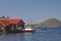 trawler  in Bjornevag at Spindsfjorden