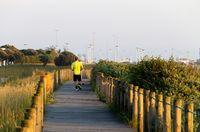 Man Runs on Pathway