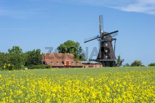 Blick zum Mühlen und Landwirtschaftsmuseum in Lemkenhafen
