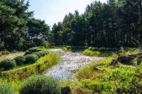 semiwon garden guksawon