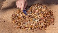 Prospecting For Sapphires