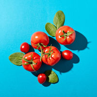 Tomatoes with green stems and spinach leaves presented on a blue background with reflection of the shadows. Organic vegetables. Flat lay