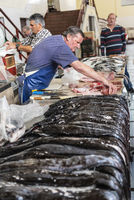 black scabbardfish, fish market, market hall, Funchal, Madeira, Portugal, Europe