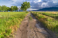 Dirt road on a grassy field with lake valley and mountain in the distance