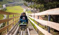 young father and son driving alpine coaster