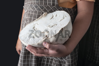 cut giant puffball mushroom on hand