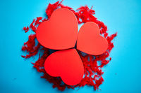 Three red, heart shaped gift boxes placed on blue background among red feathers