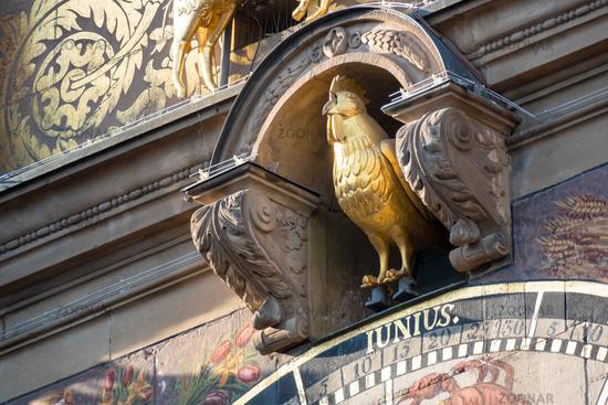 golden rooster at town hall Heilbronn astronomical clock