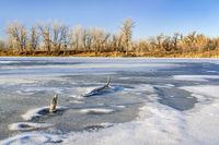 Frozen lake in northern Colorado