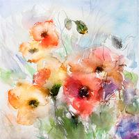 mohnblumen aquarell malerei sommer