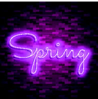 Neon banner spring. Stock vector. Poster for spring party.