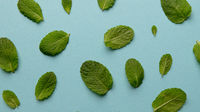Pattern of green mint leaves on a blue background