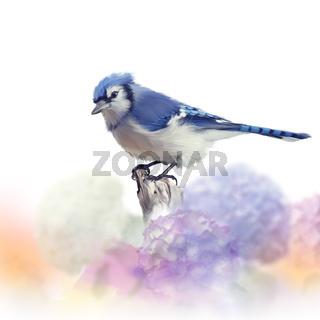 Blue jay in Flower garden,watercolor painting