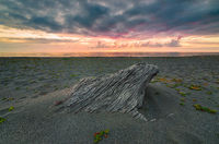 Driftwood Buried in the Sand Under a Dramatic Sunset at the Beach, Color Image