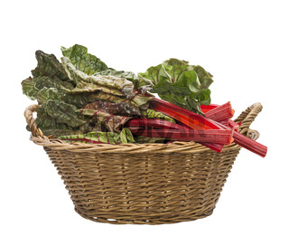 Fresh swiss chard in a basket , isolated on white