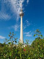 Fernsehturm (TV Tower) in Berlin