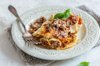 Traditional cannelloni with minced meat, tomatoes and cream sauce.