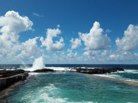 ocean wave splash on rocks at coast on a sunny day with blue sky  -