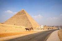 horse ride in the desert Cairo Egypt