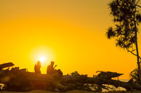 Romantic couple at beach at sunset