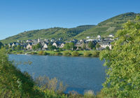 Wine Village of Reil at Mosel River,Rhineland-Palatinate,Germany