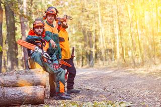 Arbeitsschutz und Schutzkleidung für Holzfäller