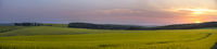 Beautiful sunset over hills with yellow rapeseed culture