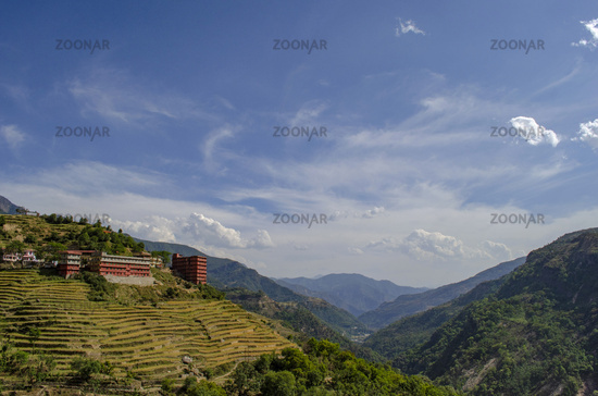 Terrace paddy fields near Rudraprayag, Garhwal, Uttarakhand, India