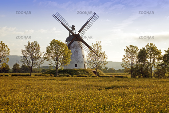 wind mill Veltheim, Porta Westfalica, East Westphalia, North Rhine-Westphalia, Germany, Europe